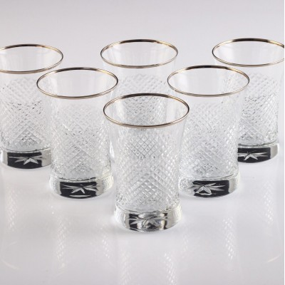 Water Glass Set of 6 - 420013 - Vizyon Platinum